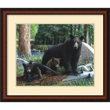 'New Discoveries' by Kevin Daniel Framed Painting Print