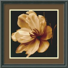 'Timeless Grace III' by Charles Britt Framed Photographic Print