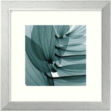 'Lily Leaves' by Steven N. Meyers Framed Print Art