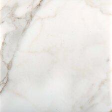 """Calacata Oro 12"""" x 12"""" Marble Field Tile in Calacata"""