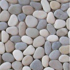 Venetian Random Sized Pebble Tile in Medici