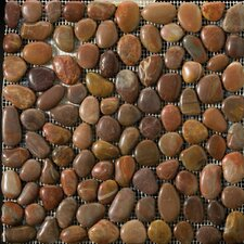 Natural Stone Random Sized Pebble Tile in Terra Cotta