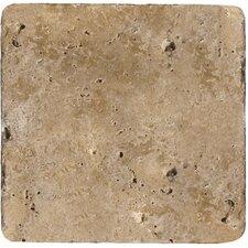 "Natural Stone 4"" x 4"" Travertine Field Tile in Mocha"
