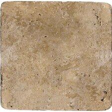 "Natural Stone 12"" x 12"" Travertine Field Tile in Mocha"
