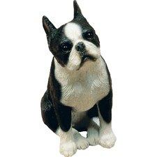 Mid Size Sculptures Boston Terrier Figurine