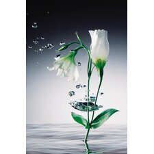 Ideal Decor Crystal Flowers Wall Mural