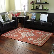 Bahamas Terracotta Indoor/Outdoor Area Rug