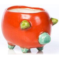 Novelty Pot Planter