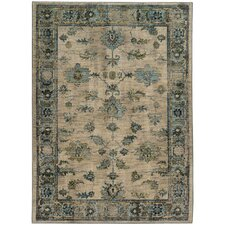 Agave Distressed Traditional Ivory & Blue Area Rug