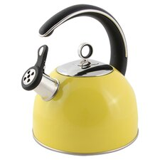 Stainless Steel/Silicone Kettle