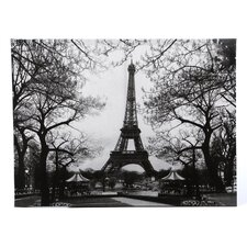 Eiffel Tower Park Photographic Print on Wrapped Canvas