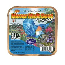 Berry Never Melt Suet Cake (Set of 12)