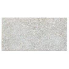 "Tricity 3"" x 6"" Ceramic Subway Tile in Grey"