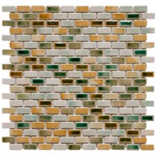 "Arcadia 0.5"" x 1"" Porcelain Mosaic Tile in Springfield"