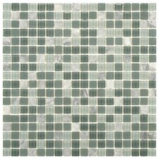 Ambit Glass and Natural Stone Mosaic Tile in Fortress
