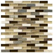 """Sierra 0.5"""" x 1.875"""" Glass and Natural Stone Mosaic Tile in Nassau"""