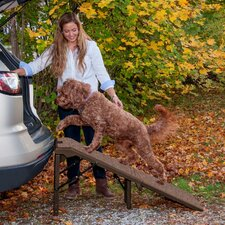 "Free Standing Extra Wide Carpeted 55"" Pet Ramp"