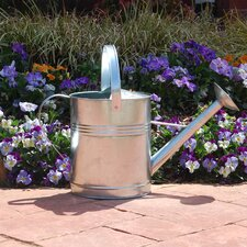 1-Gallon Galvanized Watering Can