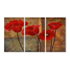 Poppies on Spice 3 Triptych Piece Wall Plaque Set
