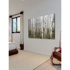 Aspen Highlands Graphic Art on Premium Wrapped Canvas