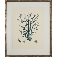Turquoise Coral I Framed Graphic Art