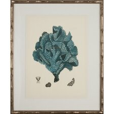 Turquoise Coral IV Framed Graphic Art