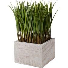 Faux Grass in Ceramic Vase
