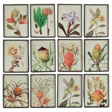 Exotic Bloom Wall Decor (Set of 12)