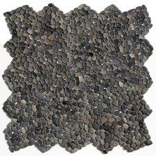 Decorative Pebbles Random Sized Natural Stone Pebble Tile in Barbados Black
