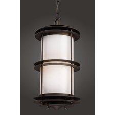 Burbank 1 Light Outdoor Hanging Lantern