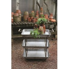 Casual Country Novelty Plant Stand