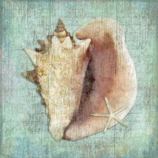Conch Wall Art by Suzanne Nicoll Graphic Art Plaque