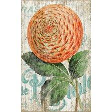 Suzanne Nicoll Zinnia Orange Graphic Art Plaque