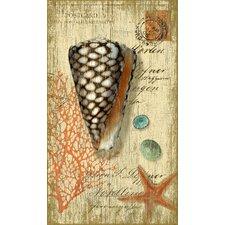 Suzanne Nicoll Cone Shell Graphic Art Plaque