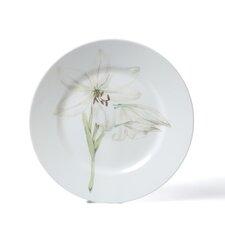 "Impressions Flower 10.75"" Dinner Plate (Set of 6)"