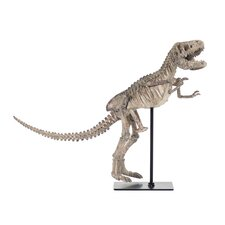 Dinosaur Skeleton with Base Wall Décor