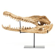 Alligator Skull with Base Wall Décor