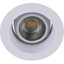 "Adjustable Spot 3"" Recessed Trim"