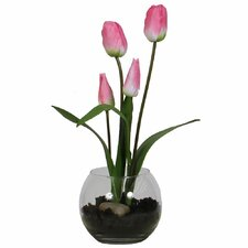 Floral Tulip in Rose Bowl with Soil