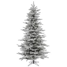 4.5' Flocked Slim Sierra Christmas Tree