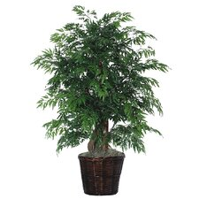 Deluxe Artificial Potted Natural Ming Aralia Tree in Basket