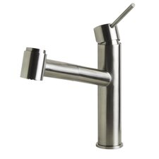 Kitchen Faucet with Pull-Out Spray