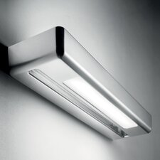 One Wall Sconce