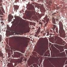 "Rosso Levanto 12"" x 12"" Marble Field Tile in Red"