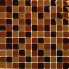 Crystallized 1'' x 1'' Glass Mosaic Tile in Brown