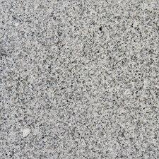 """12"""" x 12"""" Granite Field Tile in Bianco Catalina"""