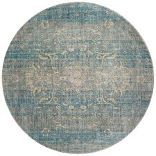 Blue Round Rugs Wayfair