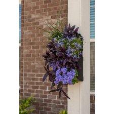 Grovert Novelty Wall Planter