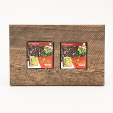 Reclaimed Square Wall Planter