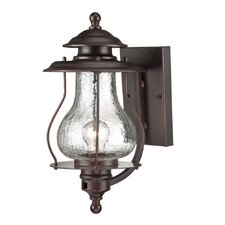 Blue Ridge 1 Light Wall Lantern
